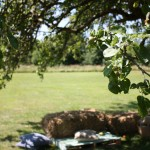 The Cider House Orchard @ The Grange